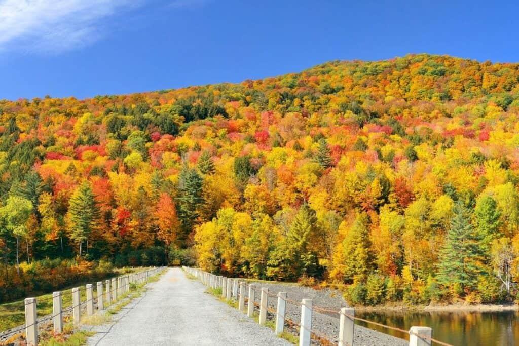 Fall foliage Stowe, VT