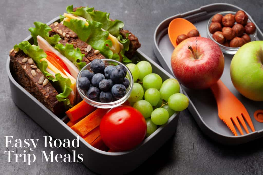 Healthy road trip lunch box with sandwich and fresh vegetables, water bottle, nuts and fruits