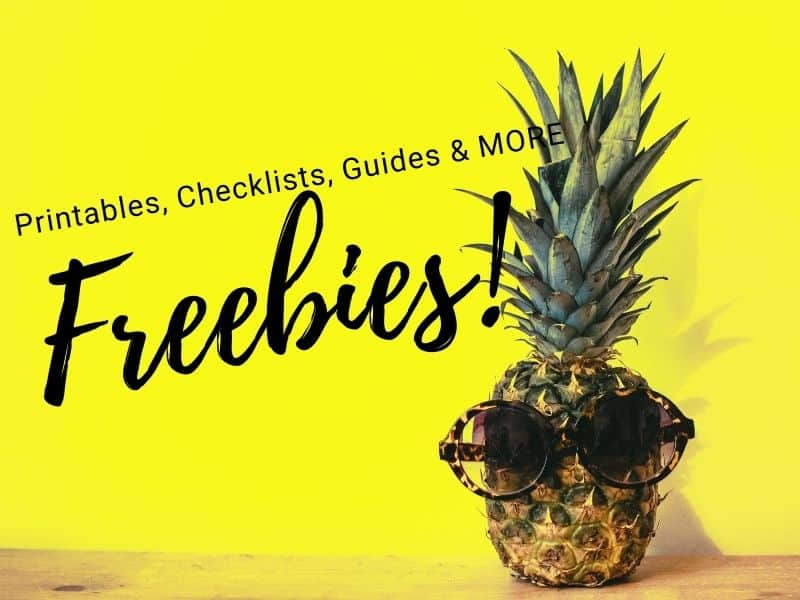 Freebie Library Pineapple with sunglasses