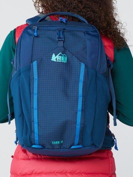 Young person facing away, wearing an REI backpack for kids.